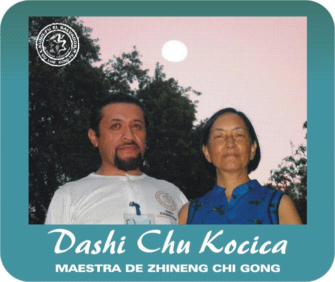 Chi Gong Dashi Shu Kocica png