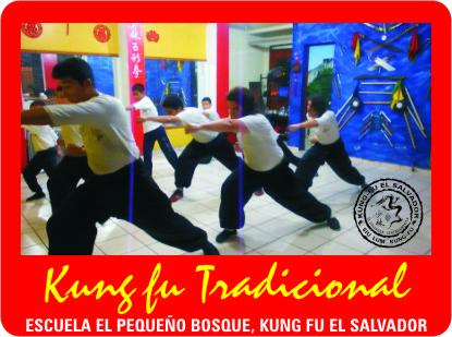 Foto Kung fu Web Inicio 24