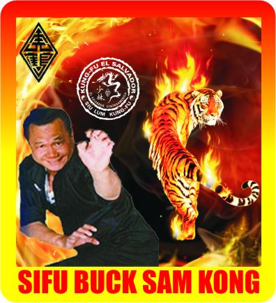 Sifu Buck Sam Kong Tigre de Fuego 23